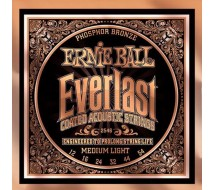 Cordes Guitare Ernie Ball Everlast 2546
