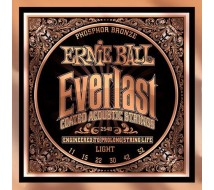 Cordes Guitare Ernie Ball Everlast 2548