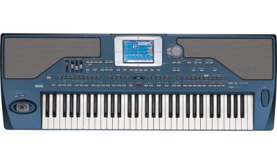 Arrangeurs Korg : Clavier Arrangeur PA800 61 Notes / Claviers